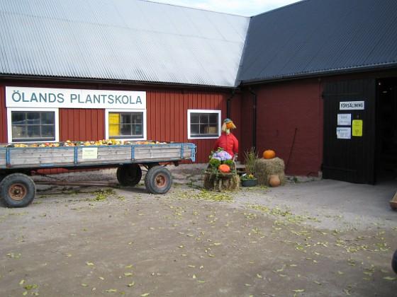 Ölands Plantskola &nbsp 2005-10-15 IMG_0001 Granudden Färjestaden Öland
