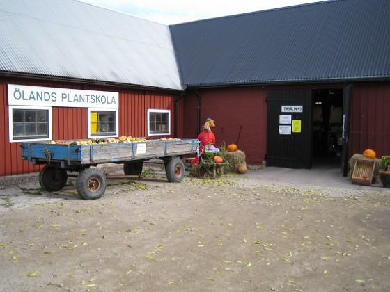 2005-10-15 IMG_0004 Granudden Färjestaden Öland