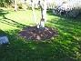 IMG_0034  2005-10-15 IMG_0034