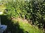 IMG_0056  2005-10-15 IMG_0056