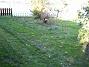 IMG_0057  2005-10-15 IMG_0057