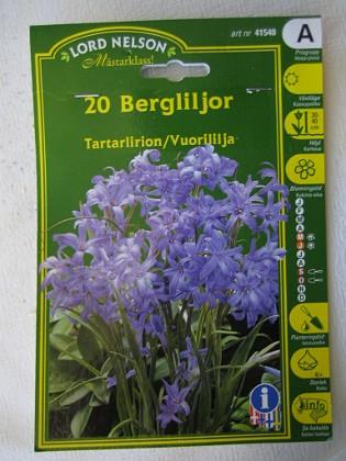 Berglilja &nbsp 2005-10-16 IMG_0164 Granudden Färjestaden Öland