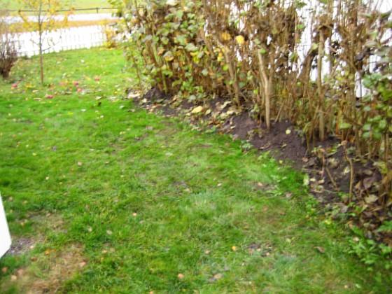 Baksidan På baksidan har jag planterat nytt gräs, där jag tidigare hade en stor jordhög.&nbsp 2005-11-05 IMG_0074 Granudden Färjestaden Öland