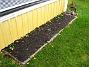 Altan. Här ser vi att många av totalt 100 Ranunkler börjat växa. 2005-11-05 IMG_0008