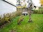 Södra gaveln Även längs häcken har jag sått lite gräs. Det såg så risigt ut förut. 2005-11-05 IMG_0076