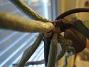 Orkidé  2005-11-05 IMG_0101