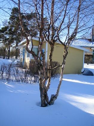 2006-02-03 Bild 020 Granudden Färjestaden Öland