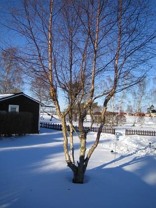 2006-02-03 Bild 022 Granudden Färjestaden Öland