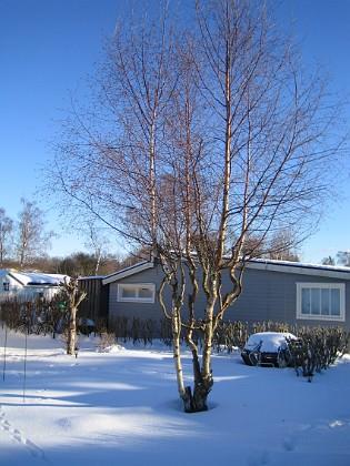 2006-02-03 Bild 026 Granudden Färjestaden Öland