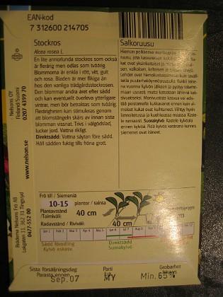 Stockros &nbsp 2006-02-18 Bild 002 Granudden Färjestaden Öland