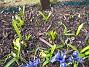 Bild 049  2006-04-12 Bild 049
