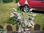 Honungslök  2006-06-25 Bild 008