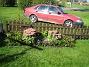 Staket, vänster Bilden visar rabatten vid staketet, vänster om grinden. Nyplanterade Ljungaster 'Victoria' syns i mitten (lila blommor). 2006-09-23 Bild 001
