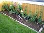 Höstflox Bilden visar mina blandade Höstflox. 2006-10-14 Bild 005