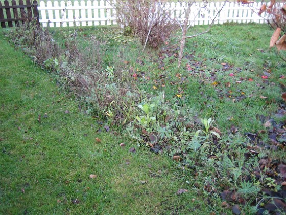 Bakgården ser lite risig ut... 2006-11-26 Bild 022 Granudden Färjestaden Öland
