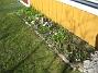 Bild 088  2007-03-17 Bild 088