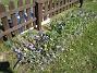 Bild 003  2007-04-06 Bild 003