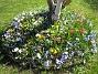 (2007-04-14 Bild 053)