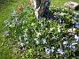 (2007-04-14 Bild 055)