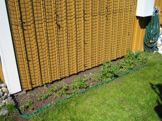 2007-04-21 Bild 005 Granudden Färjestaden Öland