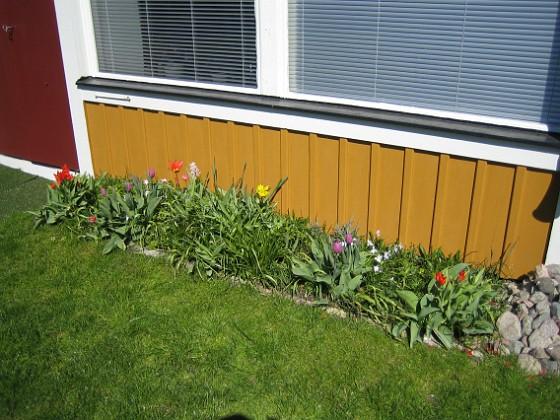 2007-04-21 Bild 006 Granudden Färjestaden Öland