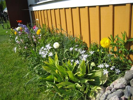 2007-05-20 Bild 021 Granudden Färjestaden Öland