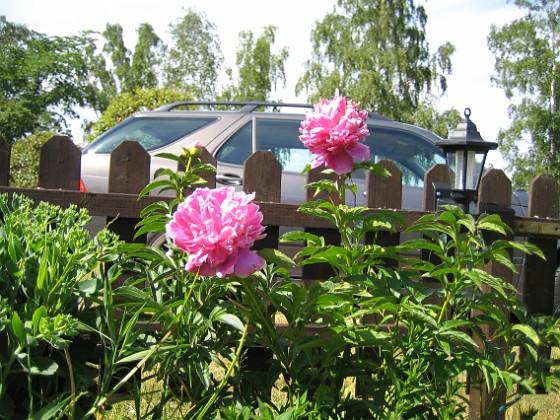 Pioner &nbsp 2007-06-20 Bild 010 Granudden Färjestaden Öland