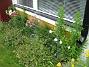 Bild 051  2007-07-09 Bild 051