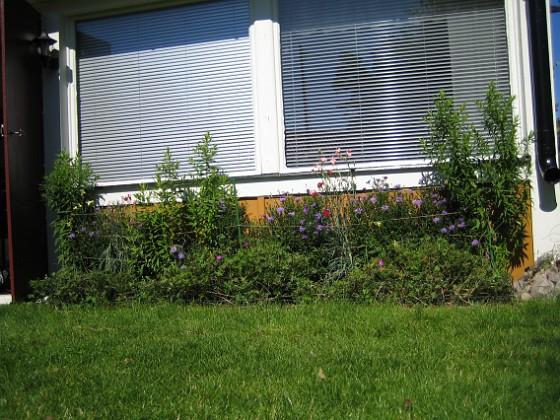 2007-08-07 Bild 005 Granudden Färjestaden Öland