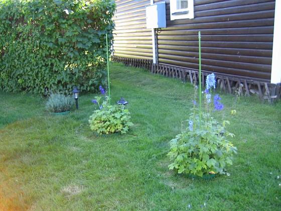 2007-08-07 Bild 050 Granudden Färjestaden Öland