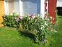 Höstflox  2007-08-07 Bild 046