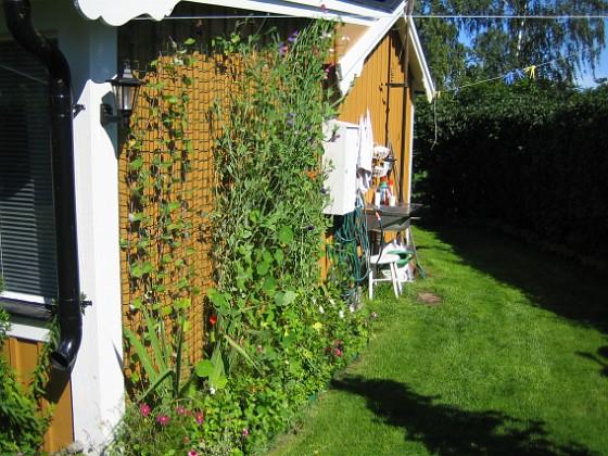2007-08-26 Bild 018 Granudden Färjestaden Öland