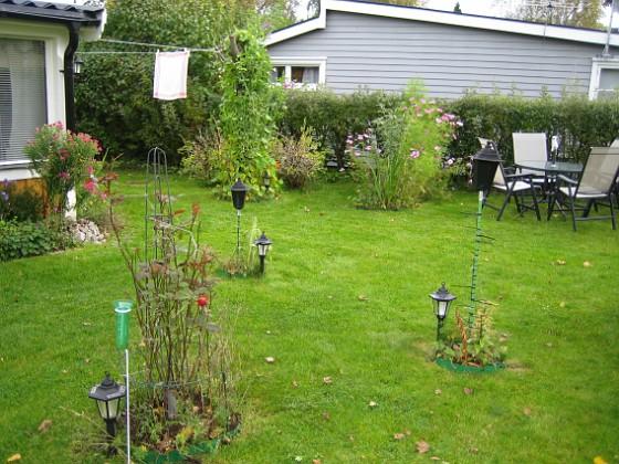 Rosbusken i förgrunden. 2007-10-07 Bild 051 Granudden Färjestaden Öland