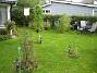 Bild 051 Rosbusken i förgrunden. 2007-10-07 Bild 051