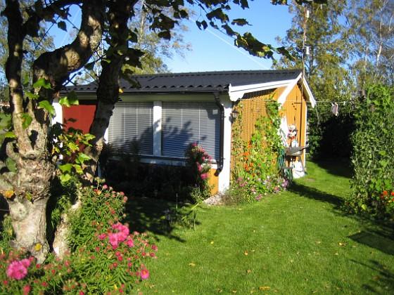Granudden Björken och huset.&nbsp 2007-10-08 Bild 035 Granudden Färjestaden Öland