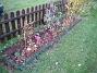 Bild 010 Staket, höger. Hade jag bara satt mina Sommarastrar i tid, så hade detta blivit betydligt snyggare. 2007-10-28 Bild 010