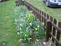 Bild 058  2008-04-12 Bild 058