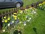 (2008-04-26 Bild 010)