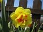(2008-04-26 Bild 076)
