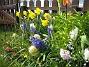 (2008-04-26 Bild 091)