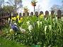 (2008-04-26 Bild 092)