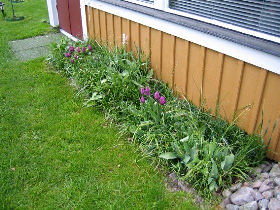 2008-05-01 Bild 041 Granudden Färjestaden Öland
