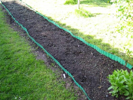 Bakgården: Fröna har börjat gro! 2008-05-08 Bild 054 Granudden Färjestaden Öland