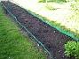 Bild 054 Bakgården: Fröna har börjat gro! 2008-05-08 Bild 054