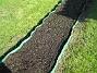 Bild 055 Bakgården: Fröna har börjat gro! 2008-05-08 Bild 055