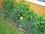 Bild 032  2008-05-17 Bild 032