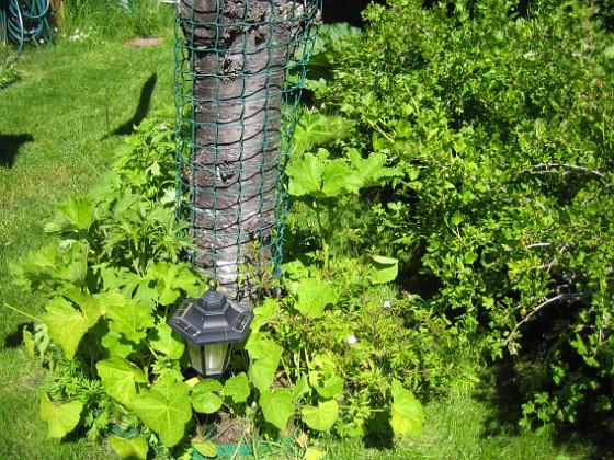 2008-06-01 Bild 046 Granudden Färjestaden Öland