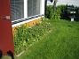 Bild 097  2008-06-07 Bild 097