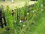 Irisar  2008-06-20 Bild 019