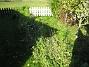 Bakgården  2008-10-19 050